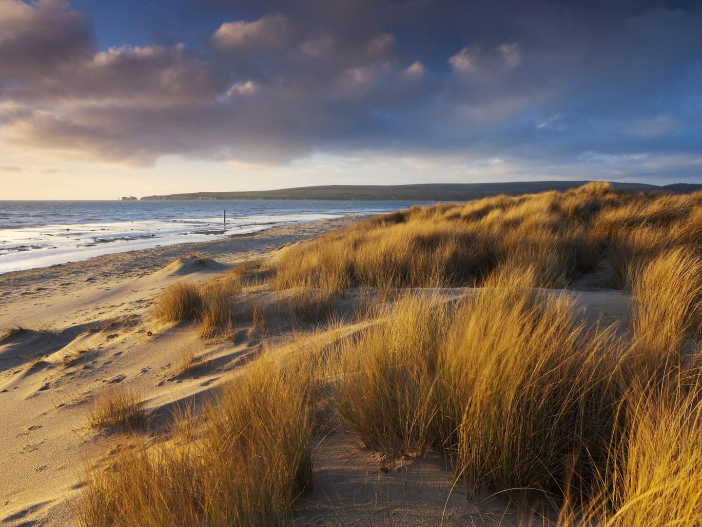 10-лучших-пляжей-Европы-Studland-Bay-england