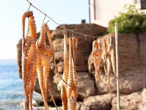 lesbos-greece-octopus