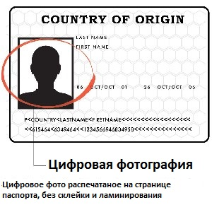 Цифровое фото загранпаспорта